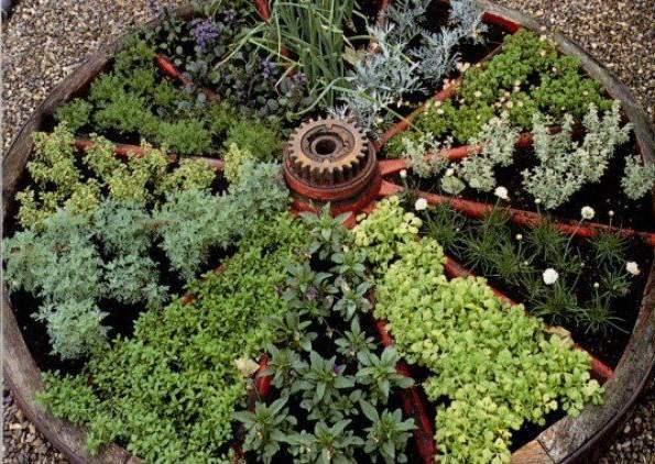 """Така """"грядка"""" (розміром з колесо підводи) може забезпечити різноманітною зеленню невелику сімю протягом весняного сезону"""