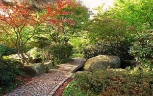 осінній сад 6