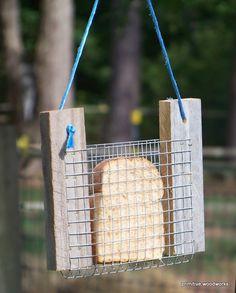 годівничка для птахів