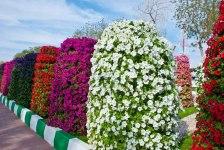 Вертикальне озеленення - клумба-башта з петуній