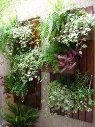 вертикальне озеленення зображення 29