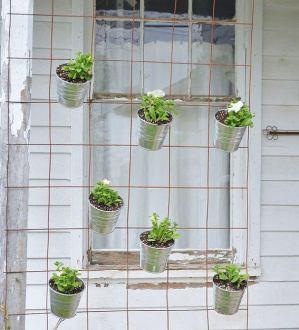 вертикальне озеленення зображення 34