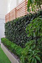 вертикальне озеленення зображення 51
