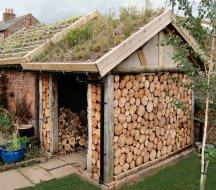 дрова картинка 12