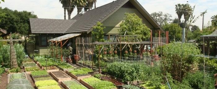 органічне землеробство картинка 6