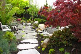 Японський сад зображення 12