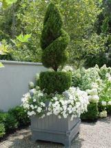 ідеї для саду картинка 30