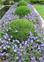 ідеї для саду картинка 42