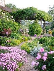 ідеї для саду картинка 48