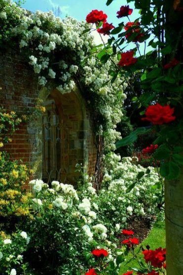ідеї для саду картинка 65