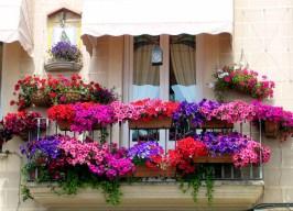 балкон картинка 13