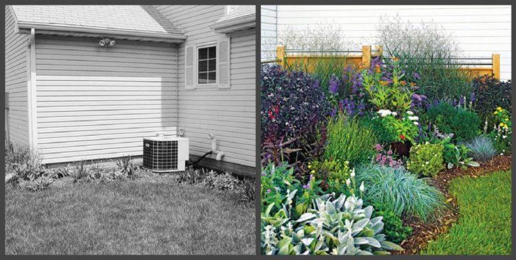Ландшафтний дизайн подвір'я - до і після, фото 7