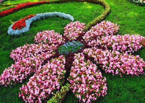 квітник своїми руками картинка 5