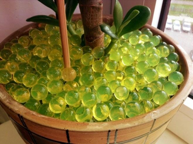 Запамятайте: аквагідрогель абсолютно безбарвний! Аквагрунт – як правило, різнокольоровий