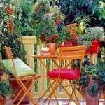 Балкон-сад – 50 ідей для дизайну балкону