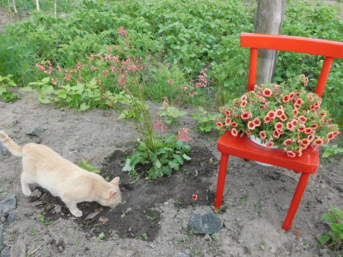 стульчик-клумба
