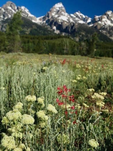 Північний Захід США фото гір