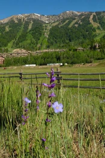 Північний Захід США фото природи