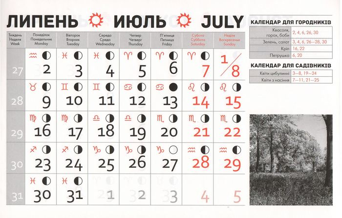 Посівний календар на липень 2018 року фото