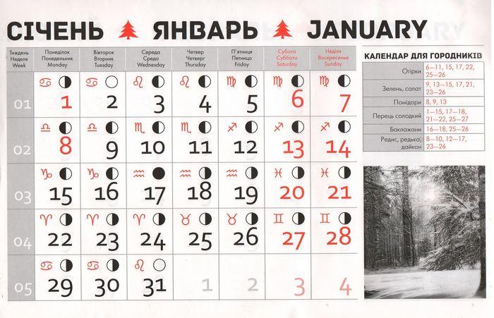 Посівний календар на січень 2018 року фото