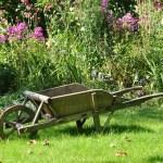 Календар садово-городніх робіт на липень
