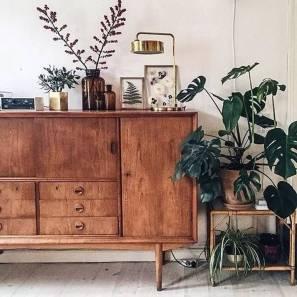 Додайте домашніх рослин