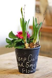 Грифельна фарба на горщиках для рослин