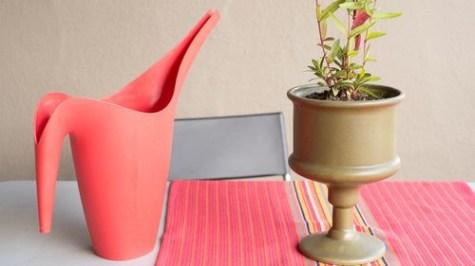 Зверніть увагу на аксесуари по догляду за рослинами