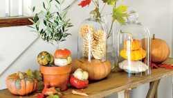 50 ідей гарбузового декору