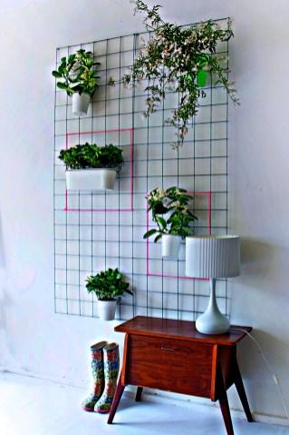 Мудборд з рослинами