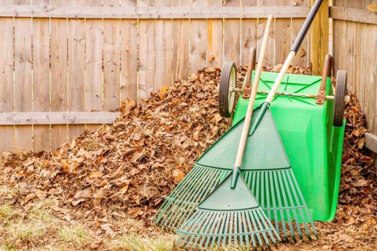 Роботи в саду і на городі в жовтні