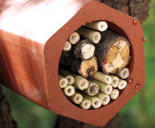 Будиночок для корисних комах круглої форми