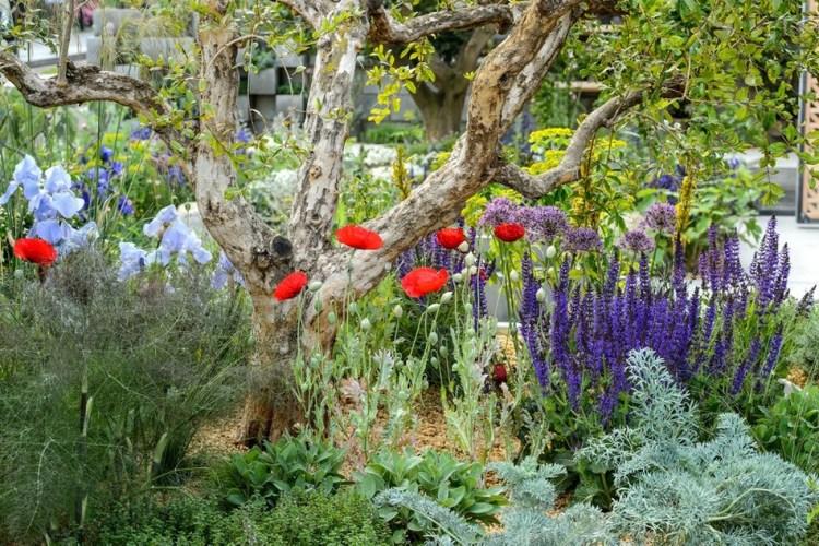 Квіткове шоу в Челсі – це не тільки найпопулярніша садова виставка, це і конкурс професіоналів