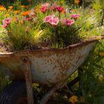 25 ідей декору саду і подвір'я з садовою тачкою, велосипедом чи колесом