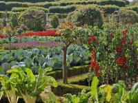 Декоративний город — історія особливого садового стилю потаже
