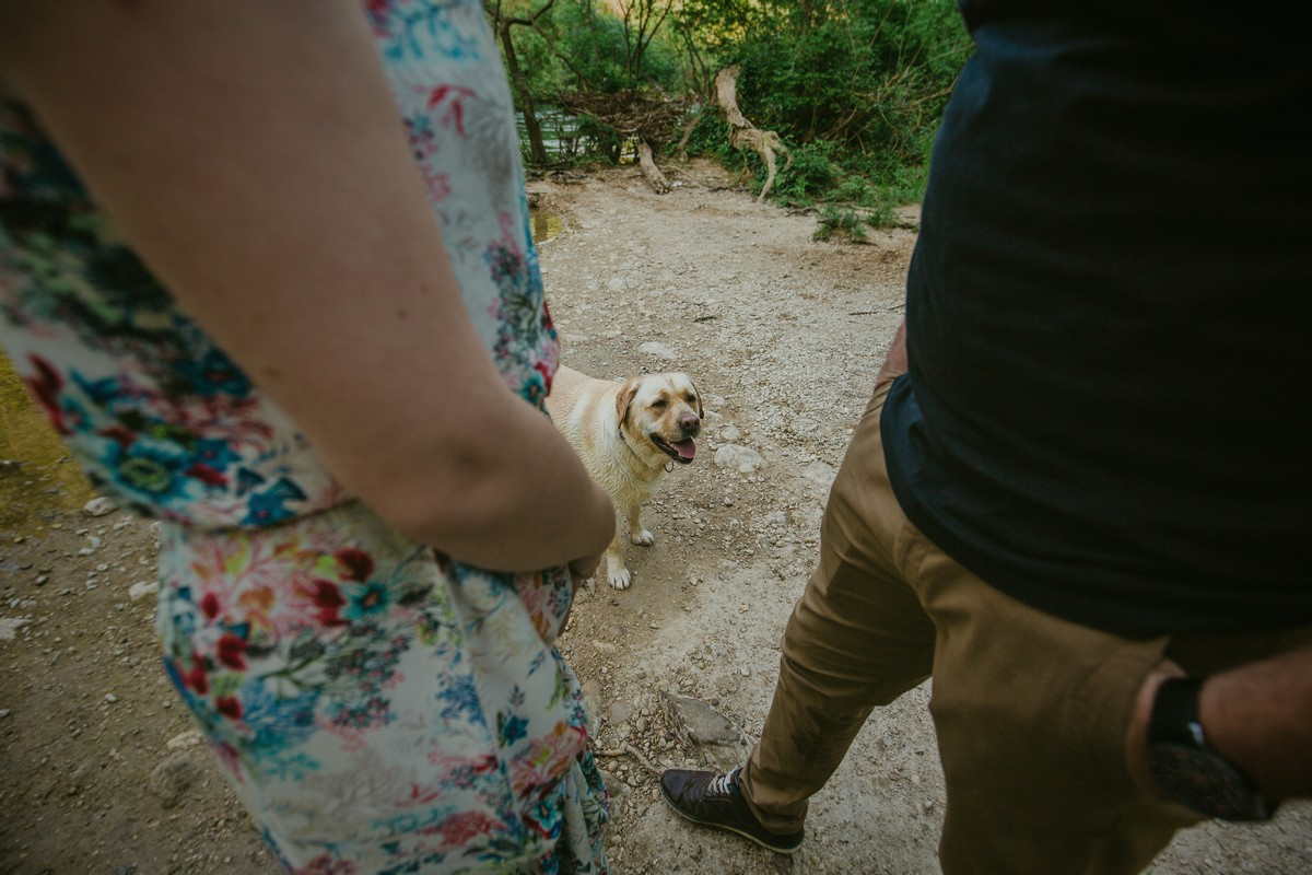 a dog engagement session