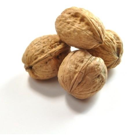 noix en coque