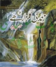 Shehr e zaat novel by umera ahmed