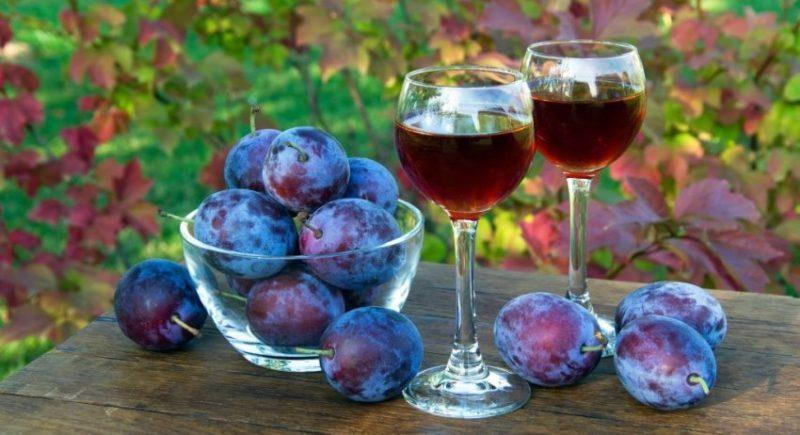 Receita para vinho caseiro da groselha preta