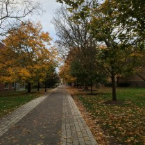 Princeton20