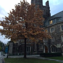 Princeton23