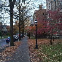 Princeton24