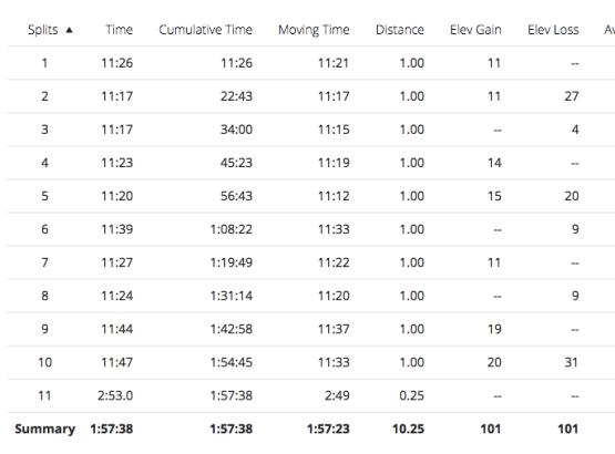 Illinois Marathon-17