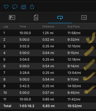 Illinois Marathon-156