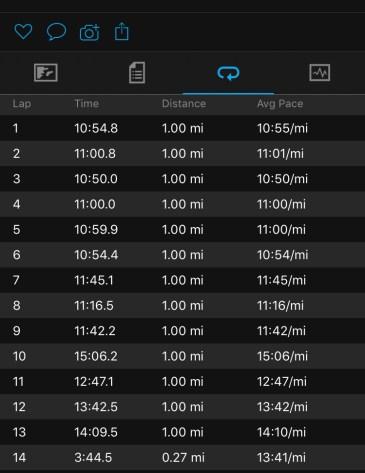 Illinois Marathon-224
