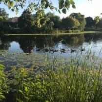 Lake Katherine-2