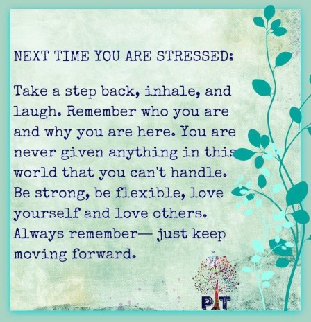 Next time you are stressed.jpg