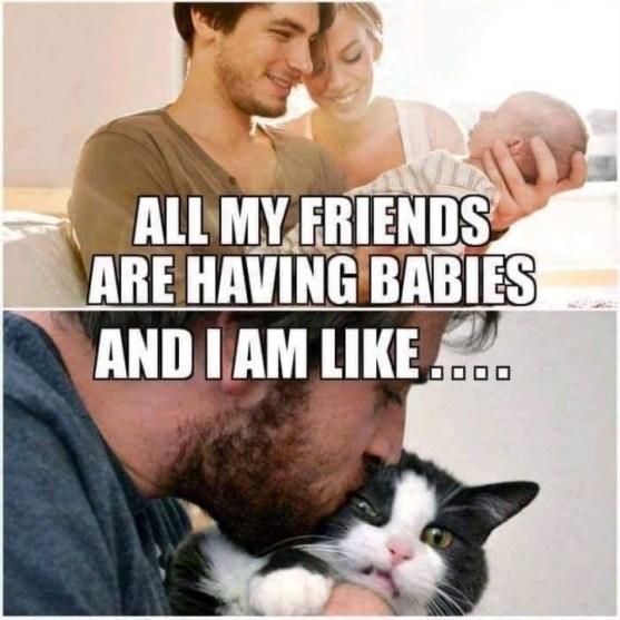 Friends having babies meme.jpg