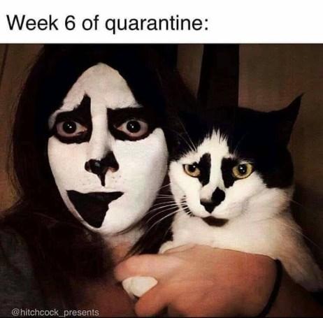 Quarantine meme-1