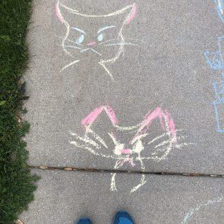 Cat drawing-1